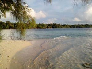 Pasir putih di Pulau Dolphin