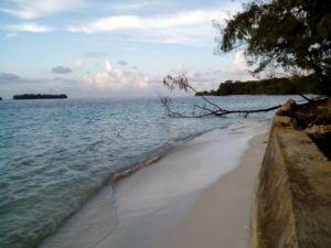 Pantai di Pulau Dolphin