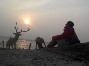 +Nggk berhasil foto sama rusa yang asli,foto sama yang palsunya pun jadi. Yap Jakarta is always full of fake.